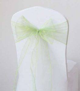 LOCATION FLOTS ORGANZA VERTS